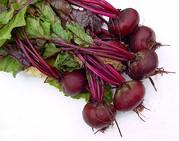 продаю овощи свежего урожая,  качество