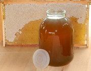 мед оптом и в розницу
